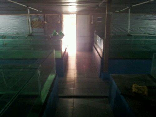 Indoor Hatchery