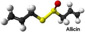 Allicin Kimia