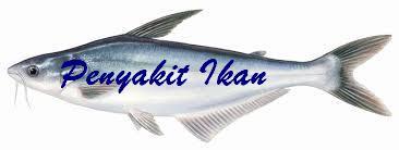 Diagram Deteksi Ikan Sakit