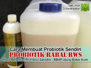 Probiotik RABAL RWS