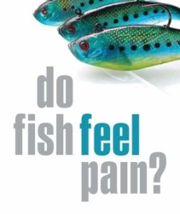 do_fish_feel_pain1