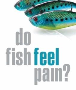 do_fish_feel_pain1